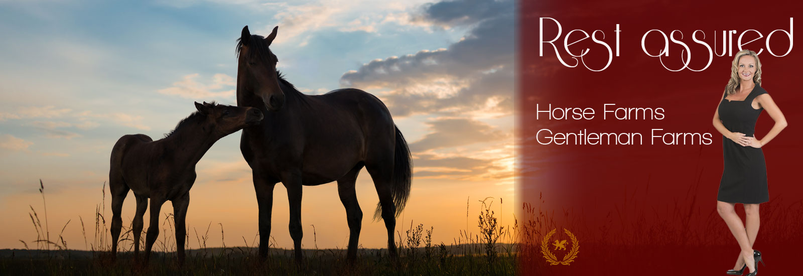 Equine Farm Insurance in Ocala