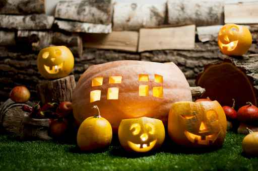 Halloween still life with carved pumpkins on grass.